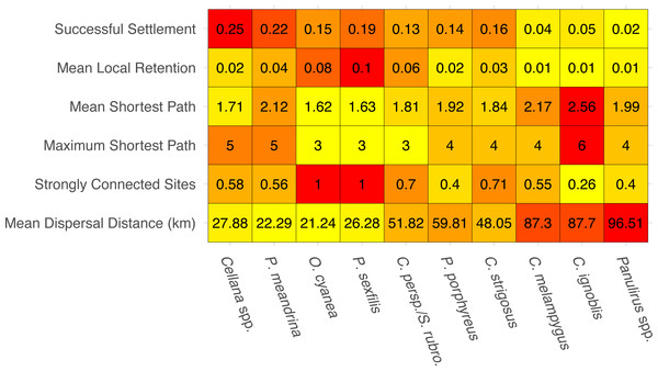 Summary statistics for each species network.