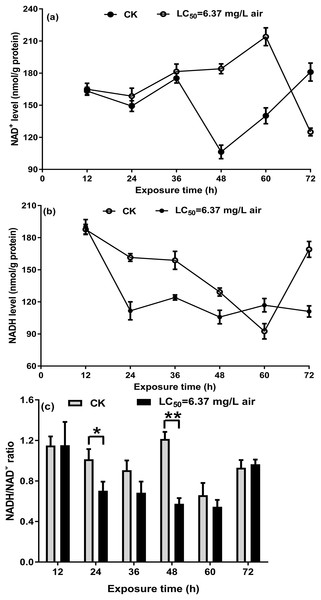 NAD+ (A) and NADH (B) in the control and oil-fumigated T. confusum extracts were quantified.