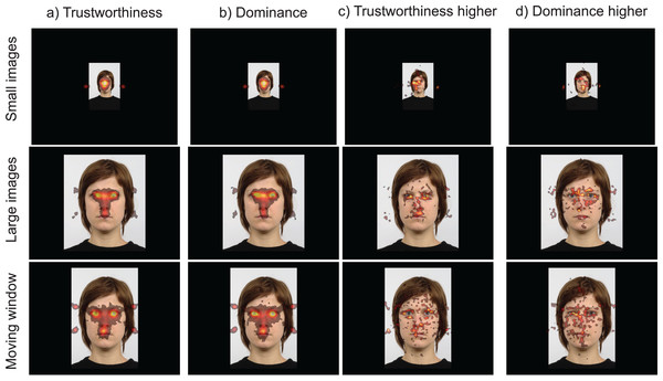 (A and B) Heatmaps of fixations across the three viewing modes (small images, larger images, moving window) and tasks (trustworthiness and dominance ratings); (C and D) difference maps showing where more fixations were made for trustworthiness ratings than for dominance ratings, and vice versa.