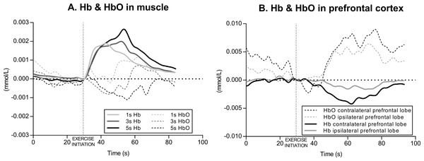 Example of muscle and cerebral oxygenation during exercise.