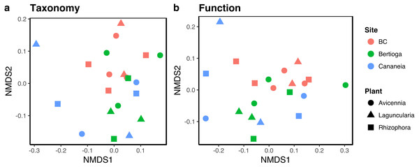 Non-metric multidimensional scaling plots (NMDS) of metagenomic data based on MG-RAST classification of sequences obtained from litterbags left on mangrove sediments.