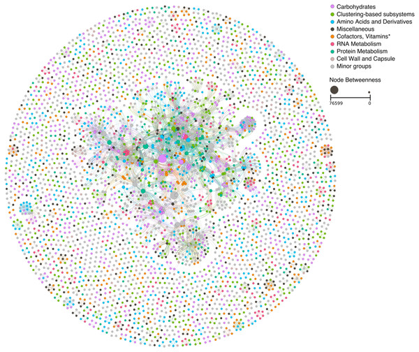 Ecological network based on the functional classification of the mangrove trees litter decomposition metagenomic samples.