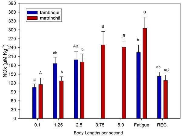 NOx (nitrites plus nitrates) in red muscle of tambaqui and matrinchã exposed for 30 min to submaximal velocities (body lengths per second; bl s−1) and at fatigue.