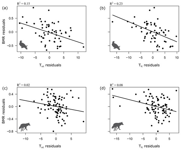 Relationship between BMR and upper and lower critical temperatures in birds (A, B) and mammals (C, D).