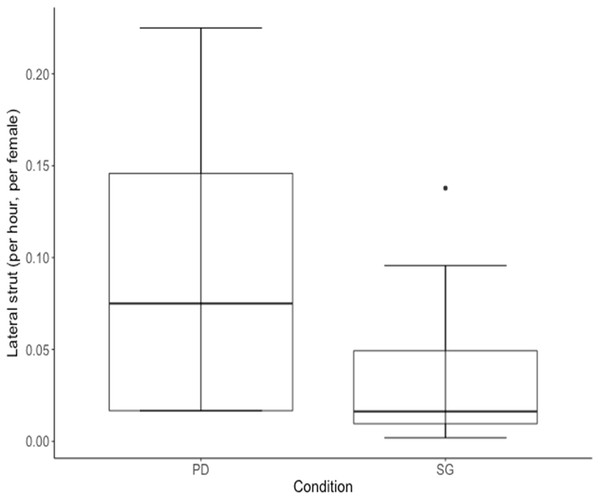 Median rate of lateral struts performed per hour (adjusted for female density) for 10 males of cohort I was higher in the Perceived Dominance (PD) condition compared to the Social Group (SG) condition.