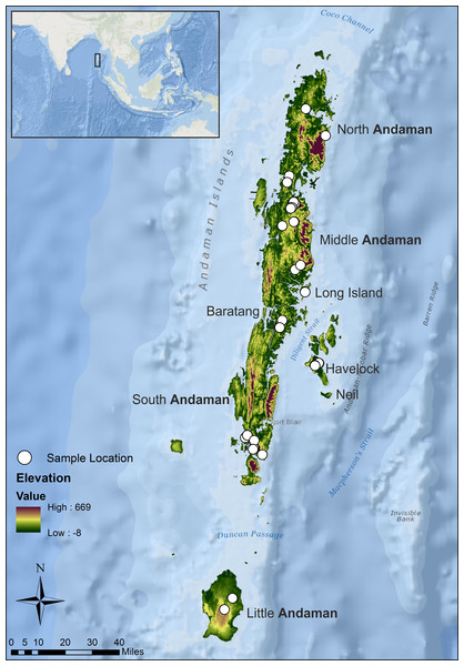 Study area map showing sampling locations from seven islands of the Andaman archipelago.