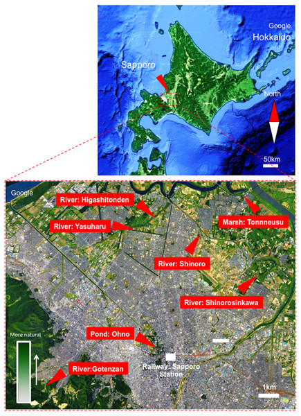 Map showing sampling locations around Sapporo City, Hokkaido, Japan.