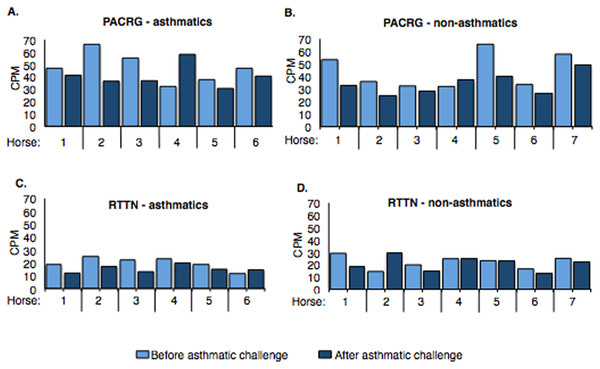Expression of PACRG (A, B) and RTTN (C, D) in asthmatic and non-asthmatic horses in counts-per-million (CPM; y-axis) pre- and post-challenge.
