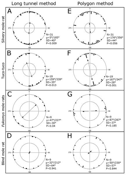Burrow system's orientation.
