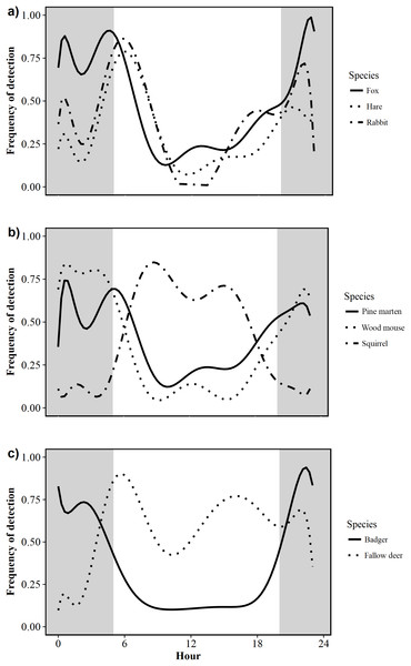 Circadian activity patterns of 10 mammal species detected during camera trap surveys in Northern Ireland from 2013 to 2016.