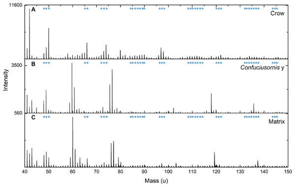 Comparison of ToF-SIMS spectra from extant and fossil melanin and a matrix control.