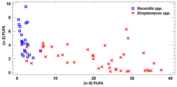 Assessment of (n − 9) and (n − 3) content of PUFA in cultural liquids of Nocardia and Streptomyces.