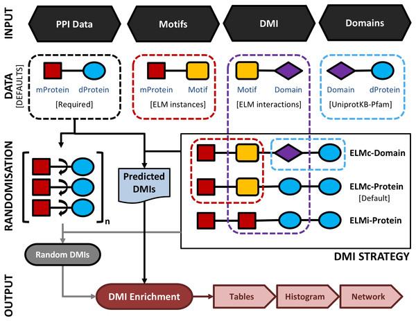 A schematic representation of the main SLiMEnrich pipeline.