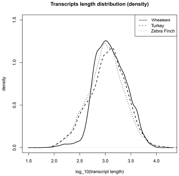 Transcript length distribution of O. oenanthe, M. gallopavo and T. gutatta, references used for the wheatear's transcriptome annotation.