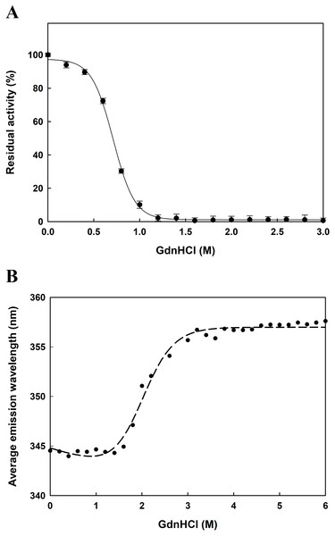 Concentration effect of GdnHCl on the catalytic activity of EcPepQ (A) and the corresponding changes in the tertiary structure as monitored by AEW value (B).