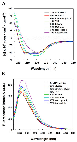 Far-UV CD (A) and intrinsic tryptophan fluorescence (B) spectra of EcPepQ in the presence of water-miscible organic co-solvents.