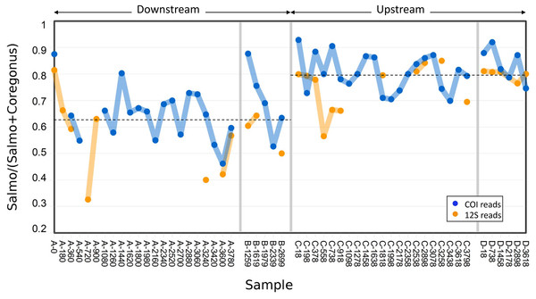 Abundance of Atlantic salmon (genus Salmo) sequence reads relative to Cisco and Bloater (genus Coregonus) sequence reads at upstream and downstream sites.