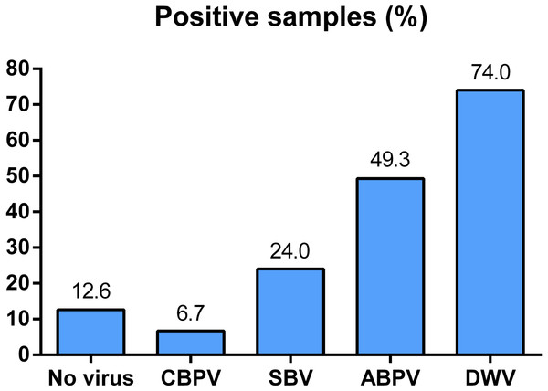Overall prevalence of CBPV, SBV, ABPV and DWV in Serbian bees (analyzed in 150 samples).