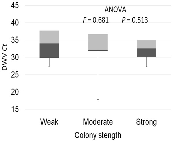 Intensity of DWV infection (Ct values) in weak, medium and strong colonies.