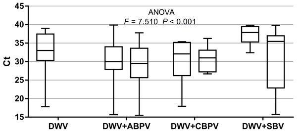 Intensity of virus infections (Ct values) in single DWV infection and in double infections (DWV+ABPV, DWV+CBPV and DVW+SBV).