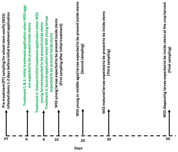 Timeline showing the synthetic plant defense elicitors (Actigard® and cis-jasmone) and Azadirachtin® applications and sampling of wheat stem sawfly infested stems relative to expected life stages.