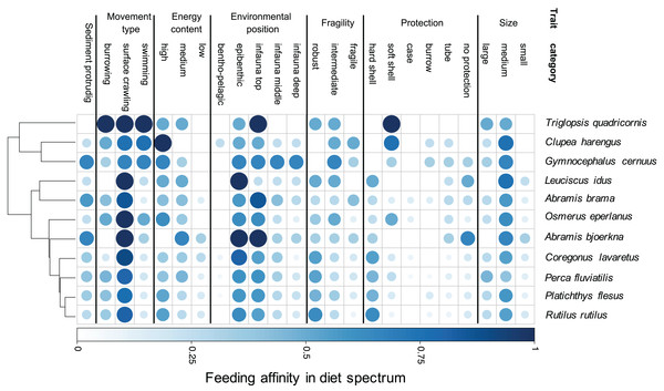 Trait-based diet spectrum of fish community.