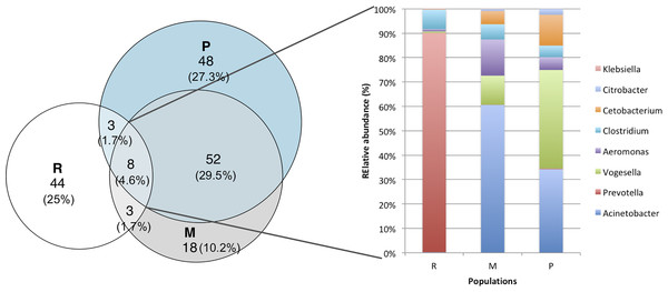 Venn diagrams showing the numbers of shared and unique genus OTUs (at 97% of similarity) among populations.