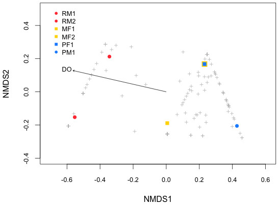 NMDS (Non-metric Multidimensional Scaling) plot of the samples (see symbols) based on Bray–Curtis distance matrix of genes OTUs from fish stomach microbiome.