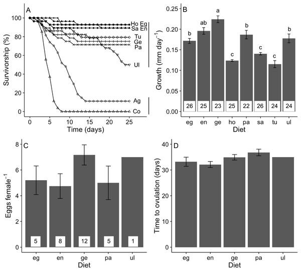 Performance of A. valida fed single algal diets.