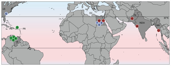 Geographic distribution of stereogenyines.