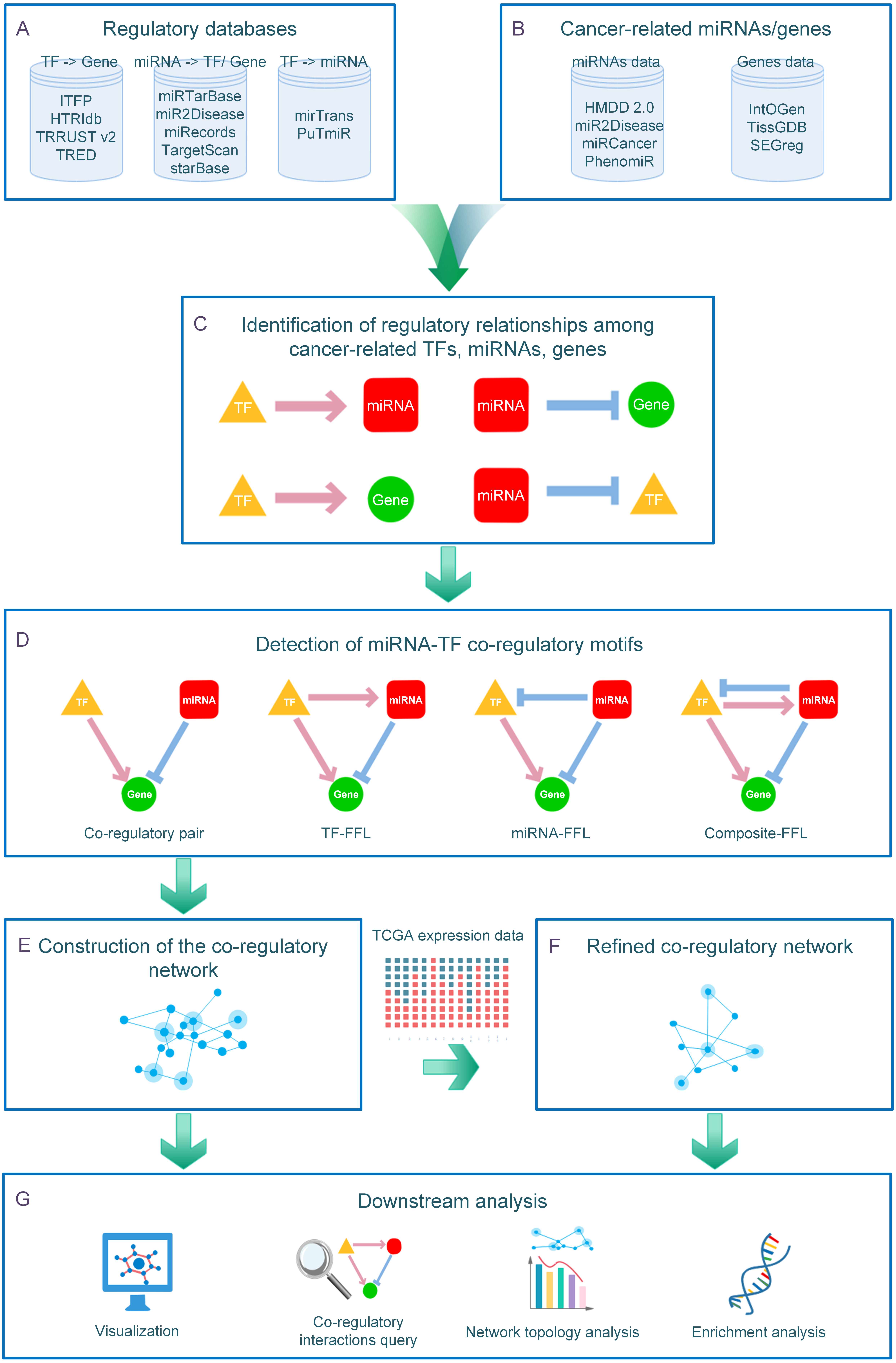 CMTCN: a web tool for investigating cancer-specific microRNA