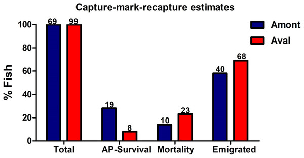 Estimates generated from the capture-mark-recapture method using PIT tags of fish at the Amont and Aval step.