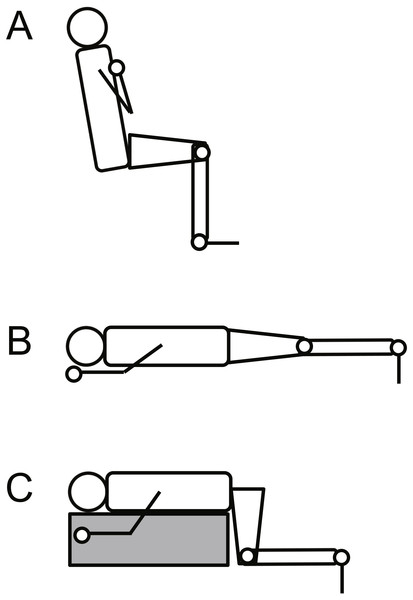Schematic illustration of the experimental setup for knee extension (A), plantar flexion at extended (B) and at flexed knee positions (C).