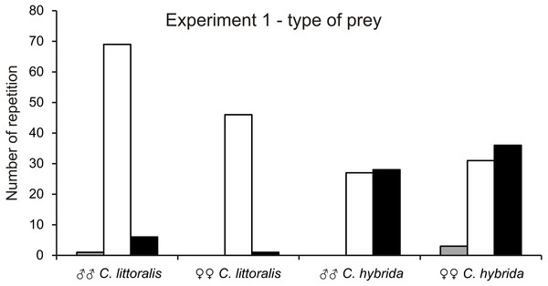 Number of chosen preys by males and females of Calomera littoralis and Cicindela hybrida respectively in experiment 1.