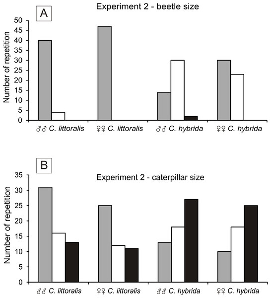 Number of chosen preys by males and females of Calomera littoralis and Cicindela hybrida in Experiment 2 for beetles and caterpillars in (A) and (B), respectively.