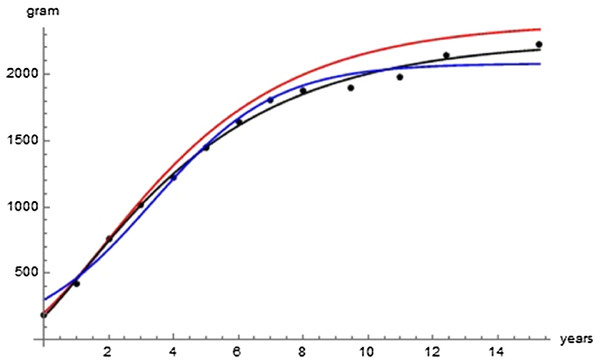 Comparison with the data of the growth curve using the Bertalanffy exponent-pair (red), the logistic exponent pair (blue) and of the best fitting growth curve (black); parameter values as in Table 2.