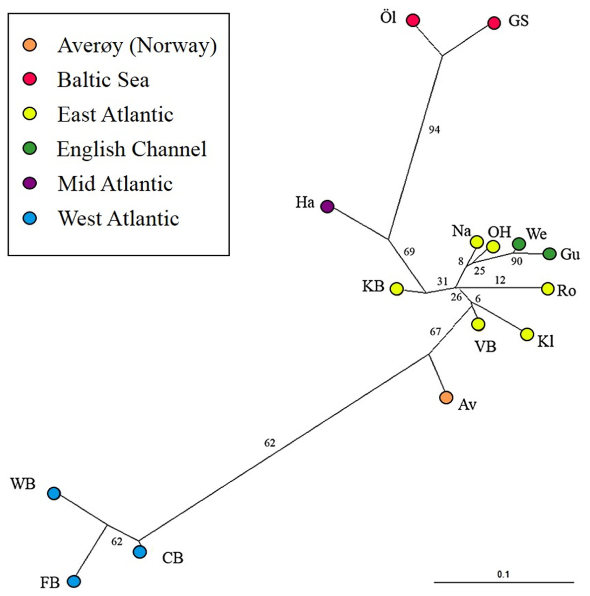 Genetic and phenotypic differentiation of lumpfish ...