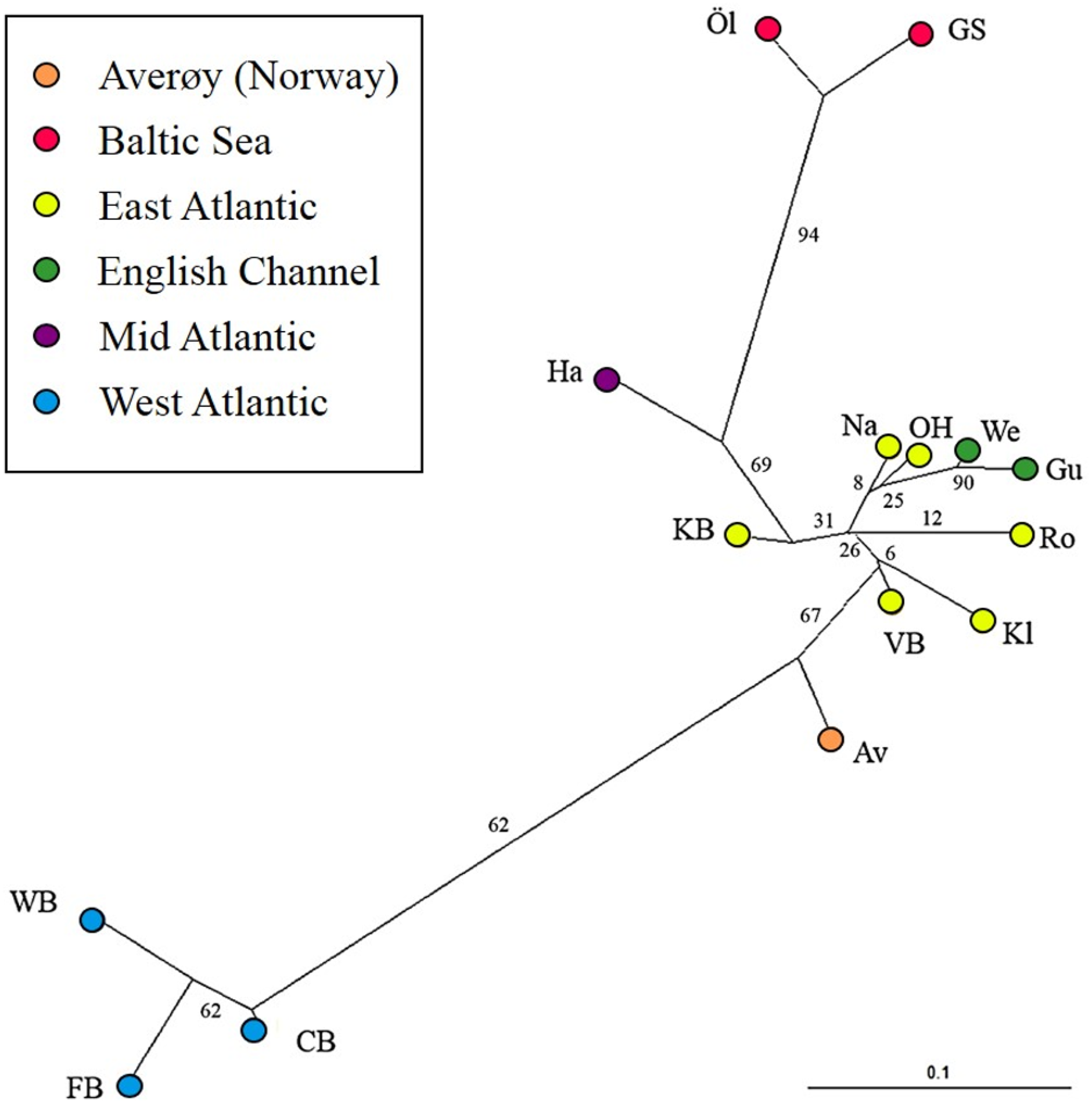 Genetic and phenotypic differentiation of lumpfish (Cyclopterus