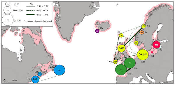 Patterns of gene flow among lumpfish populations with colours indicating genetic groups, symbol size proportional to effective population size, line thickness proportional to effective number of migrants, and shaded area representing spawning distribution.