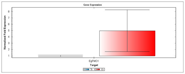 A qRT-PCR comparison of EgFMO1 expression between Inflo.1T/WA (Tt) and Inflo.1C/NA (Ct).