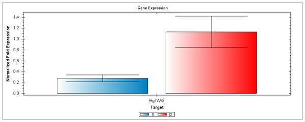 A qRT-PCR comparison of EgTAA3 expression between Inflo.6T/WA (Tt) and inflo.4C/NA (Ct).