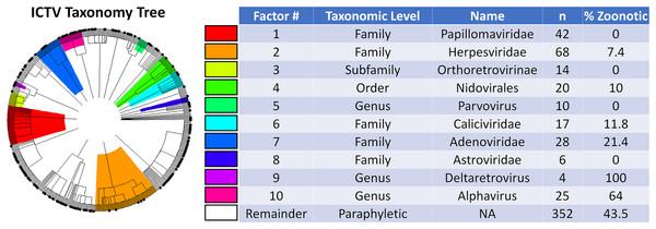 Phylogenetic factors of zoonosis in mammalian viruses.