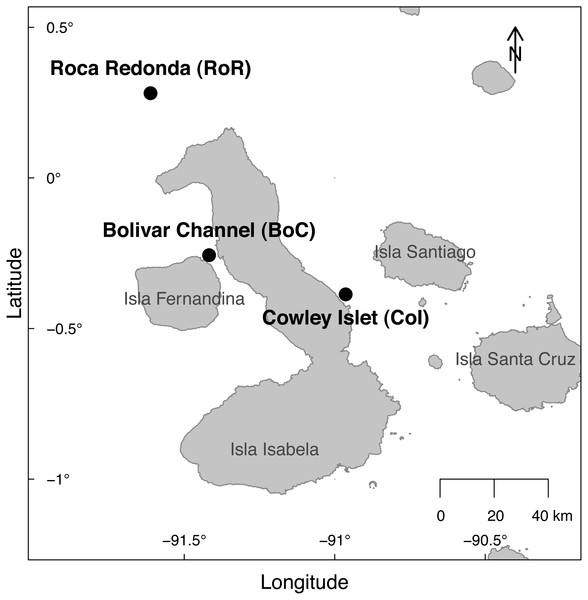 Map of the sampling sites at Cowley Islet (CoI), Roca Redonda (RoR), and Bolivar Channel (BoC) around the Galapagos Islands.