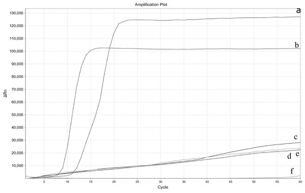 Specificity test of the real-time LAMP for Enterocytozoon hepatopenaei.
