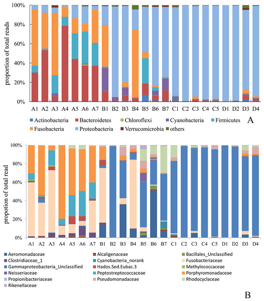 Distribution of average read number among the major phyla (A) and major class (B) in fish intestinal microbiota with different treatments.