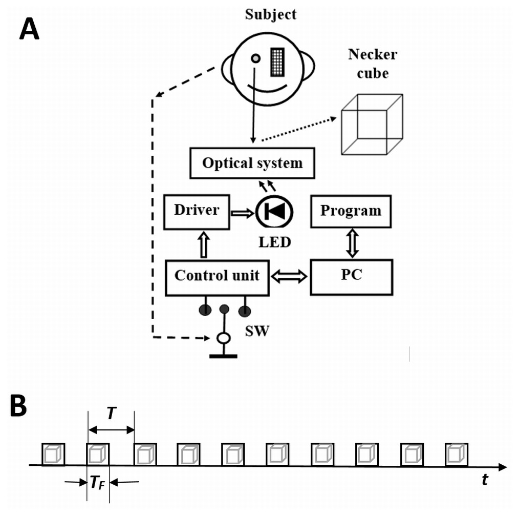 Fast Cyclic Stimulus Flashing Modulates Perception Of Bi Stable Strobe Light Circuit Related Keywords Suggestions A Structural Diagram The Experimental Apparatus And B Presentation Procedure