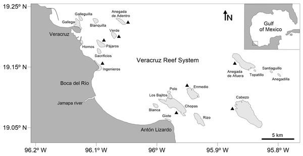 Map of the Veracruz Reef System, southwestern Gulf of Mexico.
