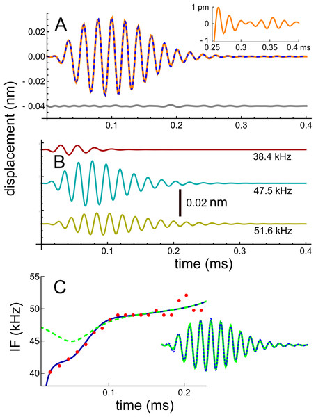 Impulse response of the basilar membrane of the mouse at a best frequency of 48 kHz (Ren, He & Barr-Gillespie, 2016), its three fitted gammatones, and the instantaneous frequencies.