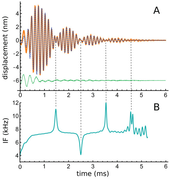 A multi-lobed basilar membrane impulse response from the chinchilla (Shera & Cooper, 2013) and its instantaneous frequencies.