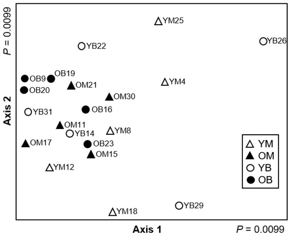 Non-metric multidimensional scaling ordination (stress = 0.088) based on Hellinger transformed abundance of saproxylic Diptera species in decaying wood in southern Quebec.